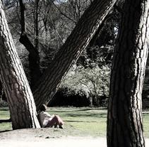 Parques y jardines. A Photograph project by Joaquín Martí - 13-07-2009