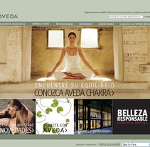 Aveda web y Newsletters. A Design, Illustration, Advertising, Software Development, and Photograph project by Ignacio Hernández Roncal         - 31.01.2011