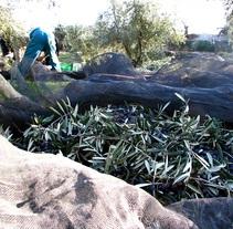REcoleccion. Un proyecto de Fotografía de Fco. Javier Sánchez Navarro - 18-02-2011
