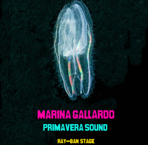 Primavera Sound. A Design project by Marina Gallardo         - 18.06.2011