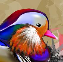 Ducks. A Design&Illustration project by Aitor Gonzalez Perkaz         - 25.01.2012
