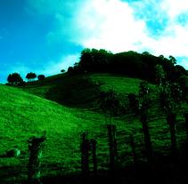 Fotografías. Um projeto de Fotografia de Róxylin Salazar         - 04.07.2012