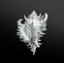 Broken Snails - S.E.. Un proyecto de Diseño de Igor Uriarte - 23-07-2013