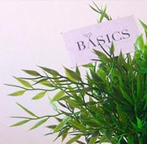 Imagen corporativa BASICS professional. Un proyecto de Br, ing e Identidad y Diseño gráfico de Fran Castillo - Miércoles, 19 de marzo de 2014 00:00:00 +0100