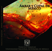 Libro Ámbar y copal de México. A Editorial Design project by Ana Veneno  - 30-09-2013