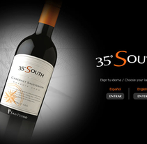 35ºSouth - Viña San Pedro. A Animation, Web Design, and Web Development project by Andrea Pérez Dalannays - Jun 19 2014 12:00 AM