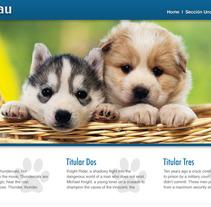 Web: Guau. A Br, ing, Identit, Marketing, and Web Design project by Paula Rubiera García         - 24.04.2013