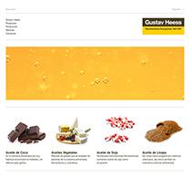 Gustavheess. Um projeto de Web design e Desenvolvimento Web de Alba Junyent Prat         - 26.06.2014