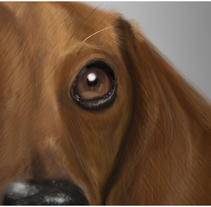 dog. Un proyecto de Diseño, Ilustración, Dirección de arte y Bellas Artes de Natasha  Luis De La Cueva          - 05.03.2014