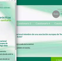 Cuestionario Fenin. Um projeto de Web design de Gema R. Yanguas Almazán         - 09.06.2015