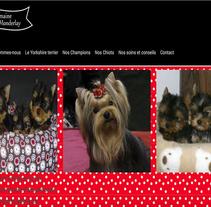 Chiot Yorkshire. Un proyecto de UI / UX, Marketing, Diseño Web y Desarrollo Web de Antonio M. López López - 27-06-2014