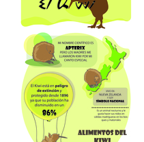 El Kiwi. A Illustration, Character Design, Editorial Design, Education&Infographics project by Clara  Sánchez-Aguilera         - 27.03.2016