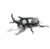 Ilustración - Escarabajo. Um projeto de Design, Ilustração, Artes plásticas, Design gráfico, Pintura e Arte urbana de Miguel Angel Lallana Figueroa - 24-06-2016