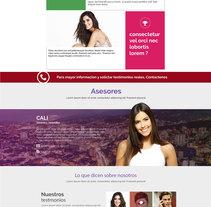 Website asesoría optima. A Design, UI / UX, Web Design, and Web Development project by ivan castro         - 07.11.2016