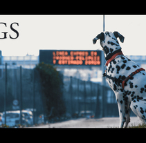 DOGS - Short Film. A Photograph, Film, Video, TV, and Video project by Alex Diaz Films - 11-02-2017