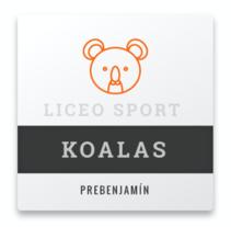 Liceo Sport. A Web Design project by César Martín Ibáñez  - 13-03-2017