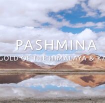 Pashmina, The Gold of the Himalaya & Kashmir. A Photograph, Film, Video, TV, Crafts, and Fashion project by Florence B.         - 26.05.2017