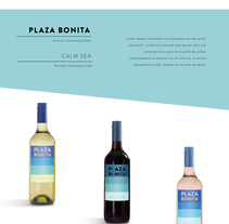 Packaging vino. A Packaging project by Fátima Gonzalez Rancaño - 10-06-2017