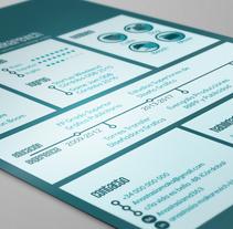 curriculum. Um projeto de Design, Design gráfico, Infografia e Diseño de pictogramas de Anastasia Makarevich         - 23.01.2018